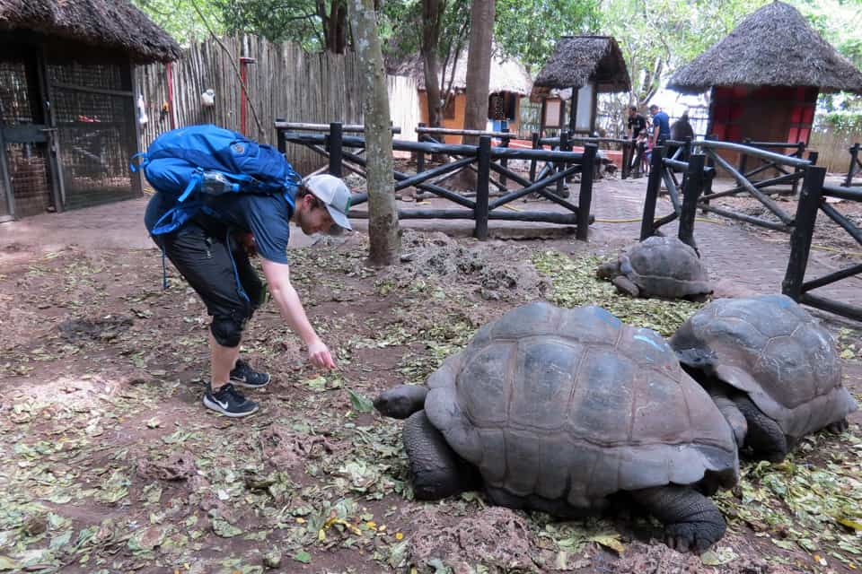 Chris and turtles2